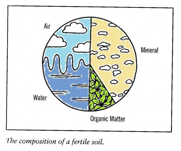 Composizione del suolo fertile permacultura