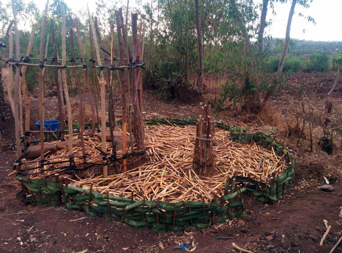 pacciamatura permacultura kenya