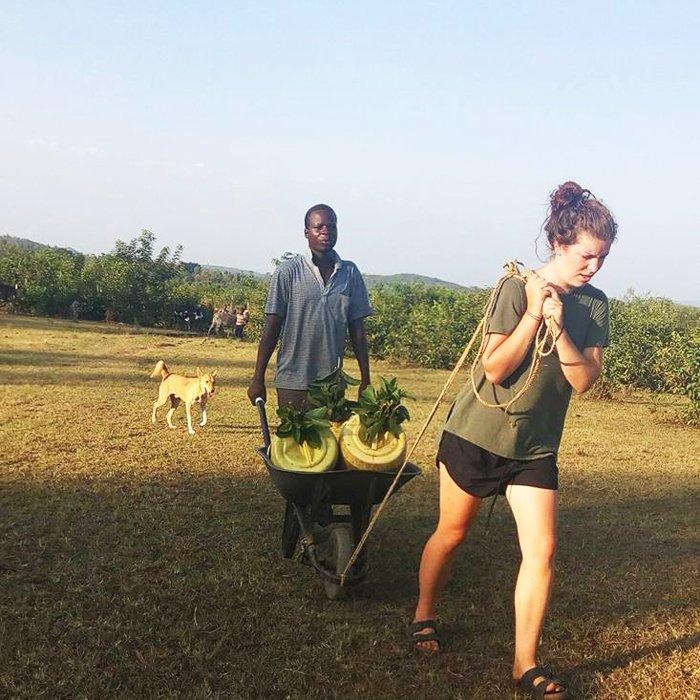 partenariato permacultura kenya