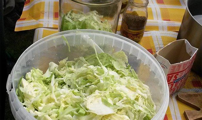 cavolo-cappuccio-fermentato