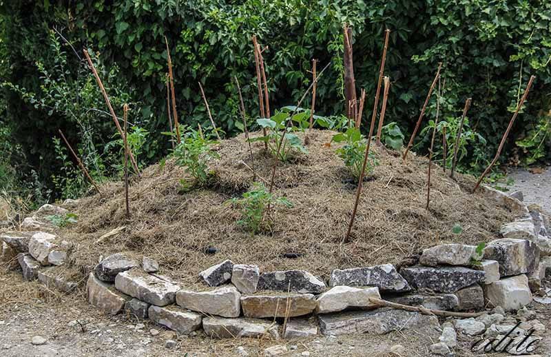 compostiera permacultura sicilia